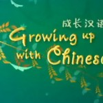 100 Videos to Learn Chinese