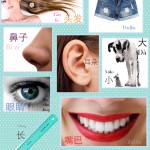 lesson 15 body collage 1