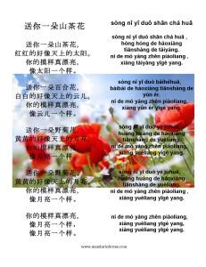 English song lyrics 送你一朵山茶花歌词